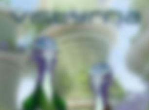 Coming Soon V.jpg