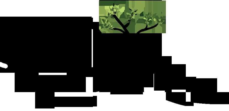 reflective summit logo