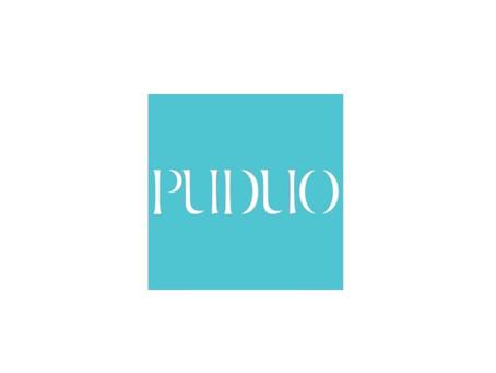 PuDuo Epoxy Resin Instructions
