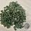 Thumbnail: Green Aventurine, Tumbled, sm, 5oz bag