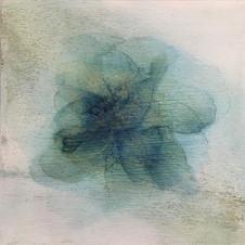 Perception Blooms