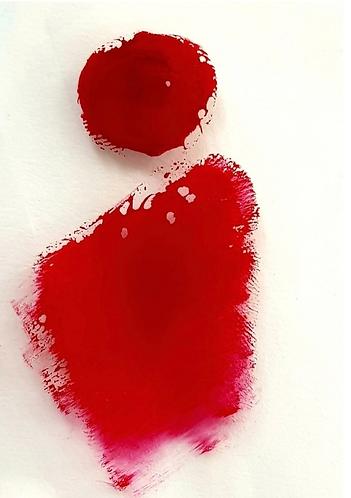 Sassy Red Pigment Paste 50g Le Rez