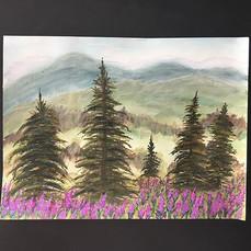 Yukon Fireweed Patch