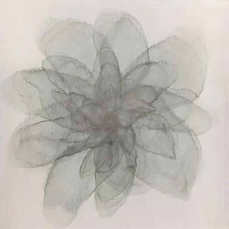 Fairest Bloom