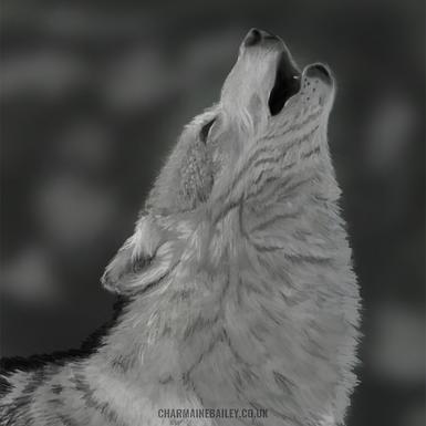 Lone Wolf Print