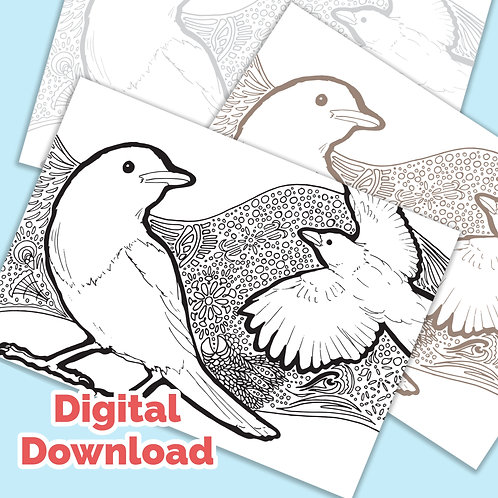 Magpies Tangle PDF Colouring Page