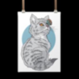 curious-kitten-display-transparent.png