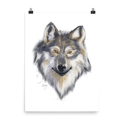 Grey Wolf Giclée Print