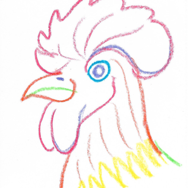 colorful chicken