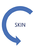 Skin 02.png