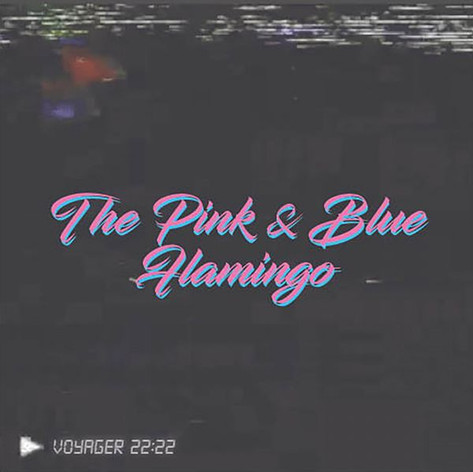 Voyager 22:22 - The Pink & Blue Flamingo
