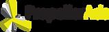 PAds_Logo_promo_on_White-1.png