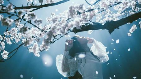 劃破次元的獨特聲線 神秘歌姬Aimer為保留完美音色拒動聲帶手術