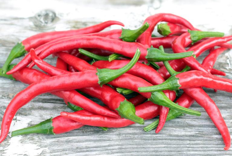 """Pepper - Long Cayenne 4"""" pot"""