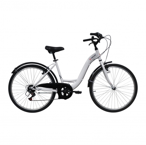 1 citybike 30