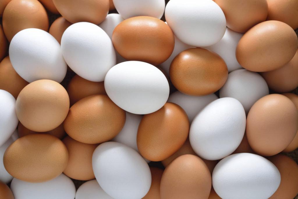 Fresh-white-and-Brown-Eggs1-1024x683.jpg