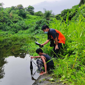 Contamination Assessment  of Heavy Metals in the Sediments of Selected Major River in Cavite