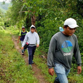 Reforestation Management Plan under Enhanced National Greening Program in Capiz