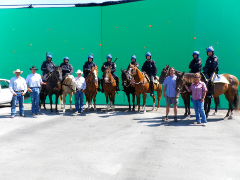 Green Screen Horses