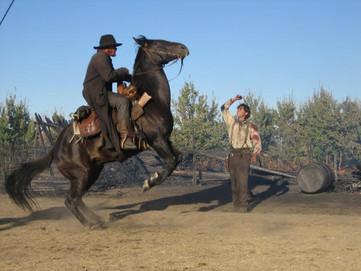 Rear Horse Action