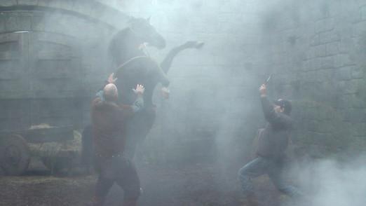 Liberty Horse Action