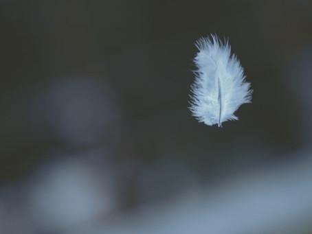 Veerkracht en weerbaarheid