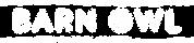 Barn Owl Logo_White@2x.png
