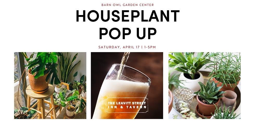 Houseplant Pop Up @ Leavitt St