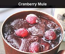 Cranberry Mule SMALL.jpg