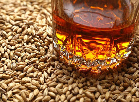 How Different Grains Affect Whisky's Taste