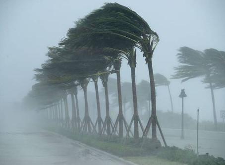 6 Tips To Keep Your Home Pest Free During Hurricane Season