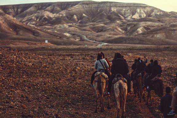 Posse on Horseback