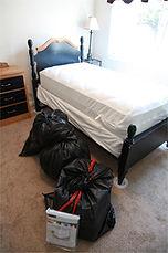 Bedbug Preparation.jpg