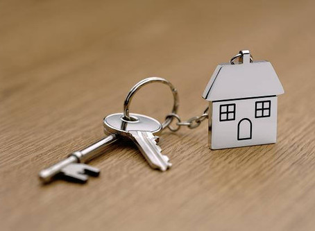 Pest Control Advice When Buying A New Home