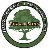 Fey%20and%20Sons%20Logo%20Final%202%2012