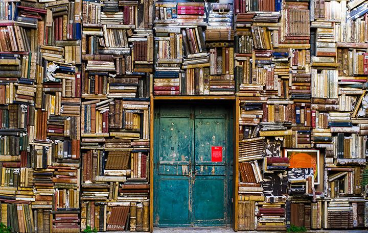 Books in wall bookcase