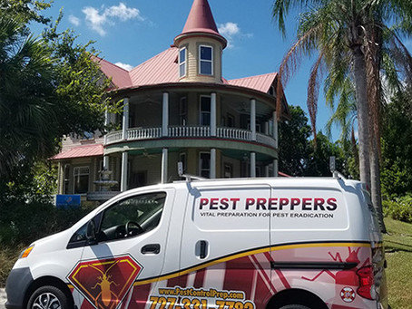 Why Pest Preppers Is The Best In The Business