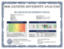 OLE - Certificate.jpg