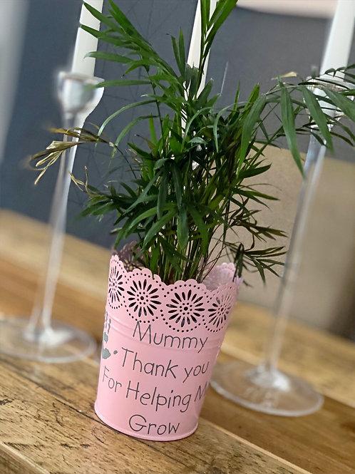 Pink Mummy Flower Pot