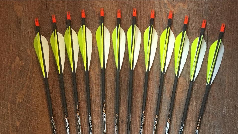 1 Dozen Easton Powerflight Feathers