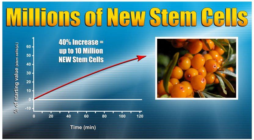Stem_Cell_Graph_Image_New-oeb3s1aja73dea