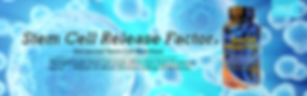stem-cell-banner-1.png
