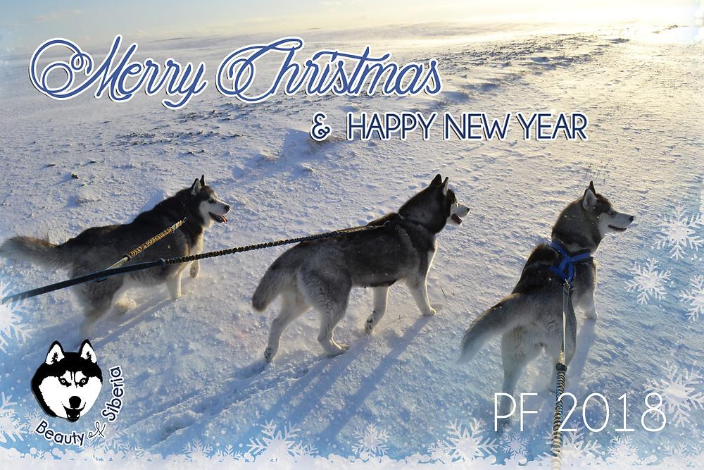 Želáme krásne a pokojné sviatky a do nového roku veľa zdravia a šťastia