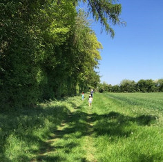 A summer walk on a beautiful sunny day