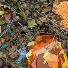 Autumn collage this week