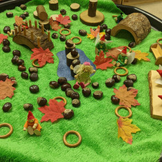 Small world play with conkers