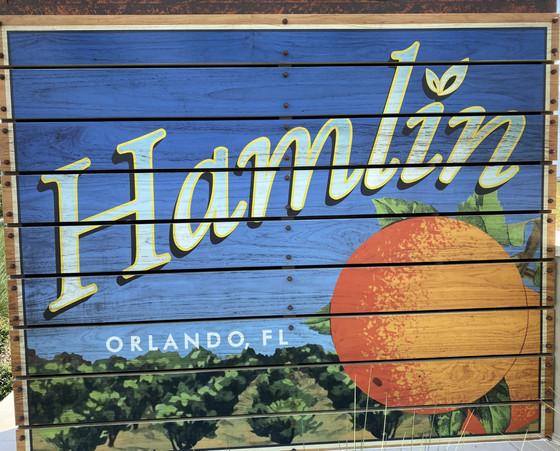 Horizon West In Hamlin Its What's Happenin'