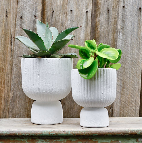 Zaria Contemporary Modern Textured White Ceramic Indoor Planter