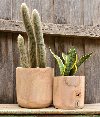 Modern Natural Timber Indoor Plant Tub Pot Planter