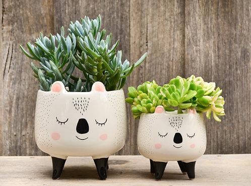 Set of Two Cute Hand Painted Ceramic Koala Planters